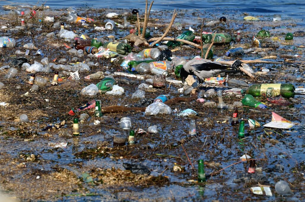 Lastic Glass Garbage Paper Waste  - ds_30 / Pixabay essay on pollution of environment