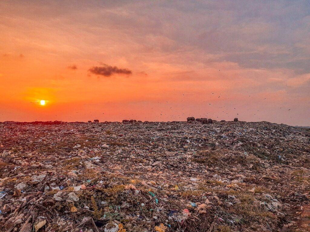 Trash Trash Land Trash Dump  - Karuvadgraphy / Pixabay essay on pollution of environment